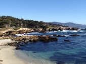picture of off-shore  - Most commonly photographed off the shores of Monterey