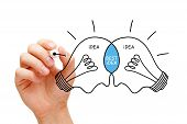 picture of collaboration  - Hand sketching Best Idea light bulbs concept with black marker - JPG