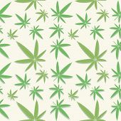 foto of cannabis  - Seamless green cannabis leaves pattern on background - JPG