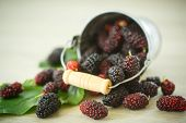picture of mulberry  - ripe black mulberry in the bucket on the table