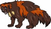 stock photo of wolverine  - Cartoon Illustration of Funny Wolverine Wild Animal - JPG