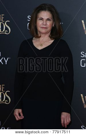 NEW YORK-DEC 8: Costume designer Colleen Atwood attends the