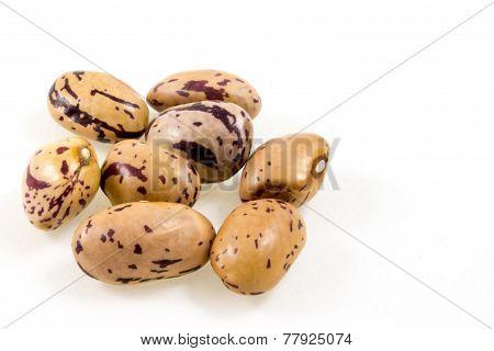 Close Up Of Some Borlotti Beans