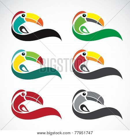 Vector Image Of An Toucan Design On White Background