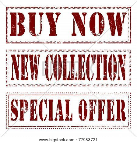 Buy Now New Collection