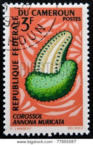 CAMEROON - CIRCA 1967: A stamp printed in cameroon shows Annona muricata (corossol) circa 1967