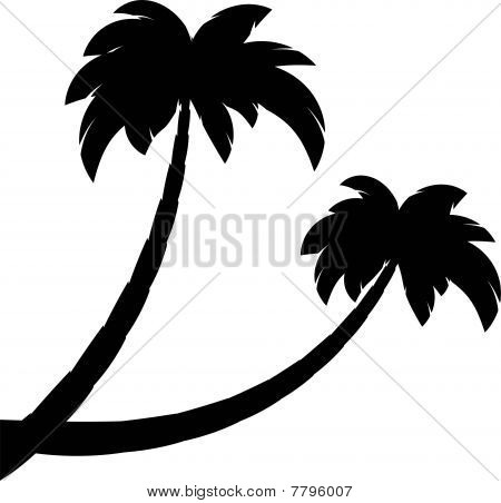 Silhouette of two palms