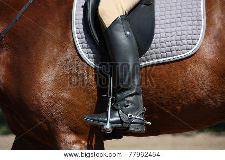 Close Up Of Rider Leg