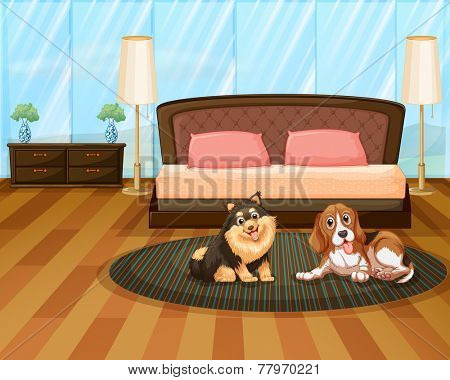 Two cute dogs inside the house