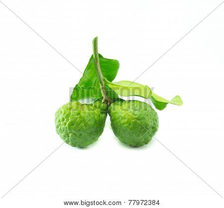 Bergamot Fruit With Leaf