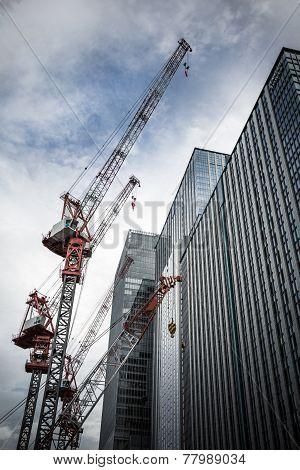Cranes and skyscrapers