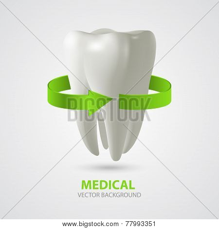 Vector Three-dimensional Tooth