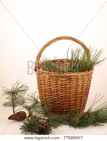Still-life with pine branches and a wattled basket
