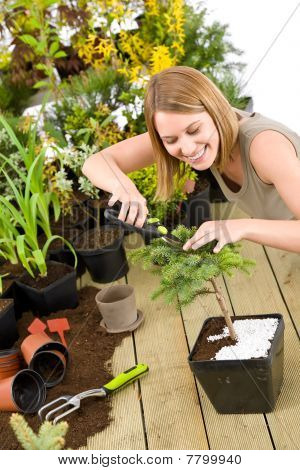 Gardening - Woman Trimming Bonsai Tree