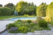 foto of swimming  - Backyard rock garden with outdoor inground residential private swimming pool and stone patio - JPG