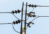 pic of utility pole  - Electrical insulator on the top of electrical pole - JPG