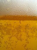 stock photo of potash  - Detail bubbles in light beer on white background - JPG