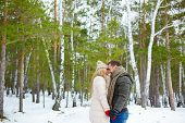 pic of sweethearts  - Young sweethearts standing face to face and laughing in winter forest - JPG