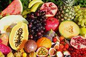 foto of papaya fruit  - Tropical organic fruits - JPG