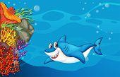 stock photo of under sea  - A big shark under the sea - JPG