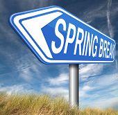 pic of spring break  - spring break holiday or school vacation     - JPG