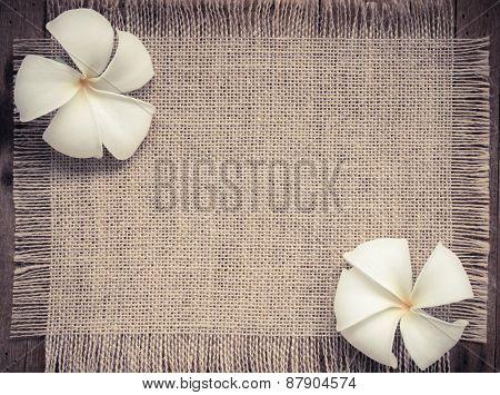 Two pumelia florwers on vintage burlap backgroundsoft focus