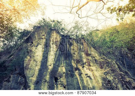 Cliff in forest ( Filtered image processed vintage effect. )