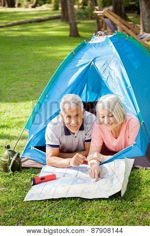 Portrait of smiling senior man with woman studying map at campsite in park