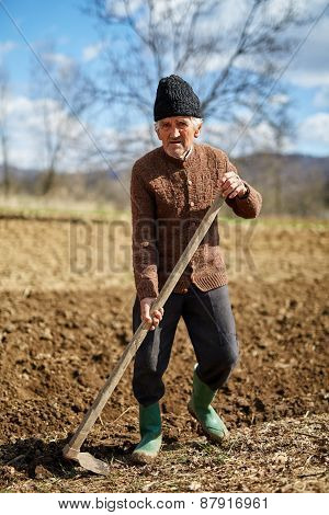 Sowing Potatoes