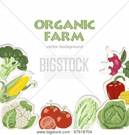 Vector Background With Organic Vegetables. Suitable For Advertising Organic Farm Or A Healthy Lifest