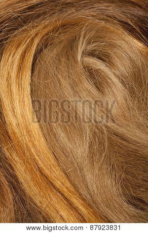 Real Human Hair