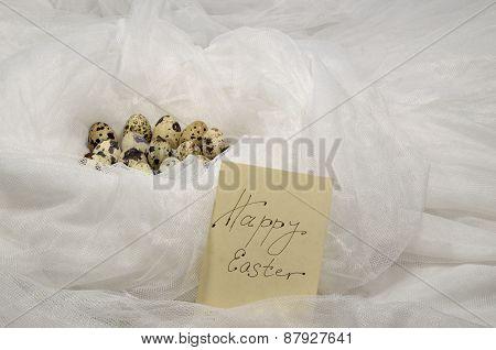 Eggs In A White Nest