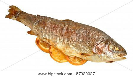 Baked Rainbow Trout Fish