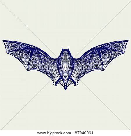 Silhouette of bat