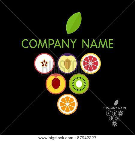 Fruits logo template (concept). Vector illustration.