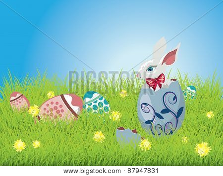Easter Bunny And Grass Field