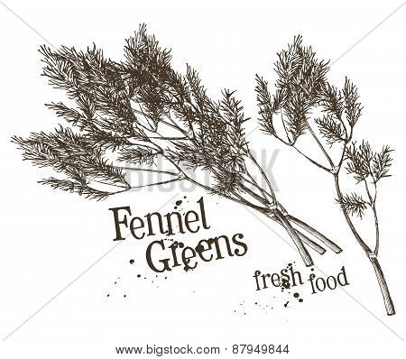 dill, fennel vector logo design template. fresh vegetables, food or seasoning, spice icon.