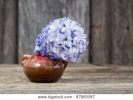 Hyacinth In Vase Wooden Background. Selective Focus