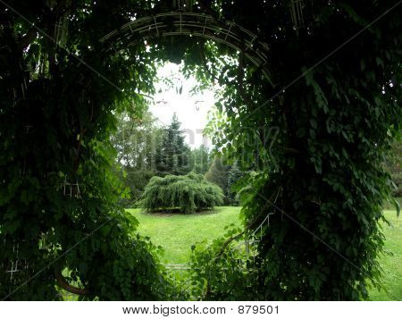 A Keyhole View Of Nature