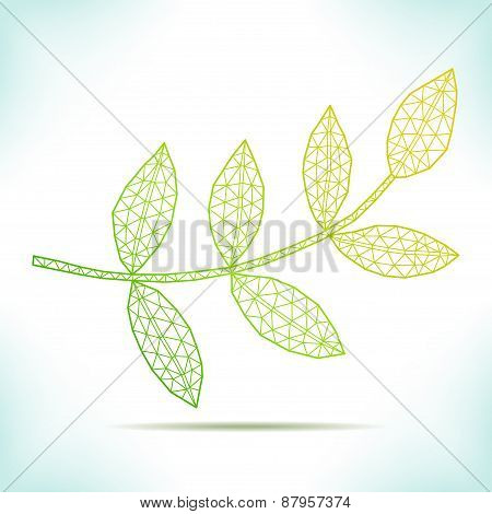 Geometric Leaf.