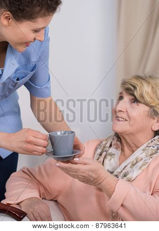 Senior Care Assistant At Work