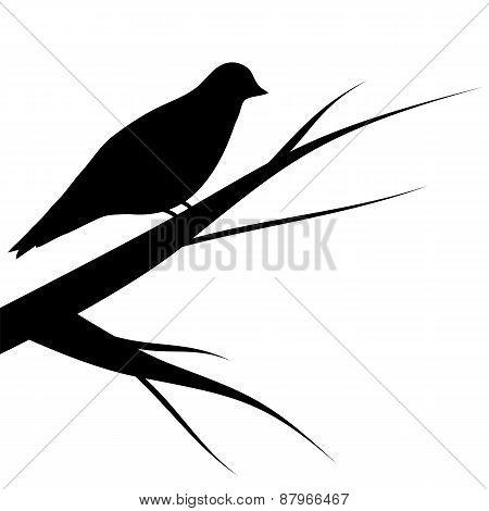 Bird Sitting On A Tree Silhouette