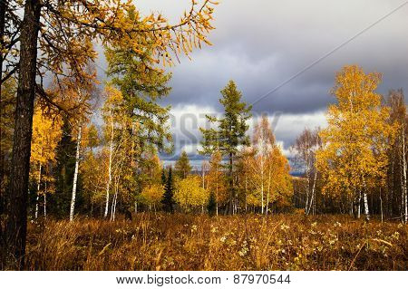 Autumn In The Southern Urals, Russia