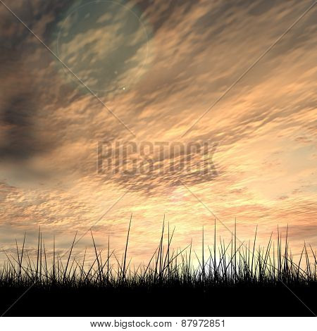 Concept or conceptual black grass or plant field or meadow silhouette in summer or spring evening over a sky at sunset with clouds background