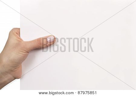 woman hand holding white empty board isolated over white