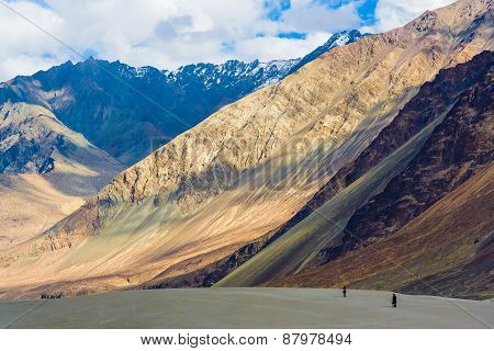 Nubra Valley And Its Contrasts, Ladakh, Himalayas, India