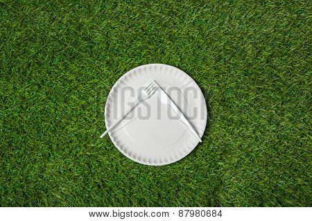 Empty plate with fork and knife lying on grass.jpg