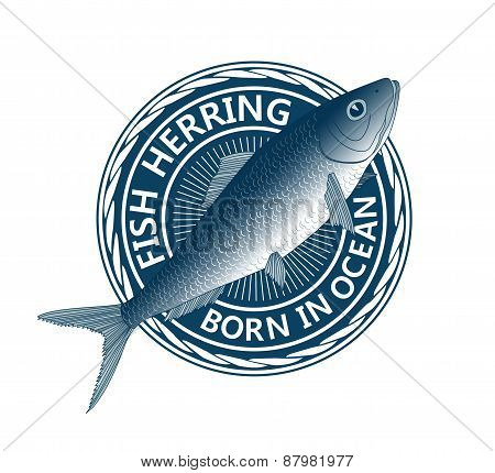 Blue Fish Herring