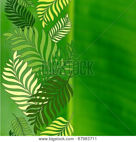 Green Palm Tree Leaves And Blurred Background With Place For Text. Vector Nature Summer Illustration