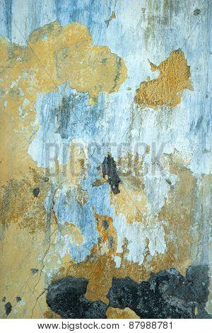 Peeling Wall Paint